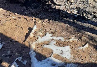 کشف جسد سوخته در یاسوج